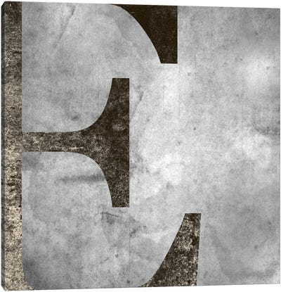 E-Silver Fading Canvas Art Print