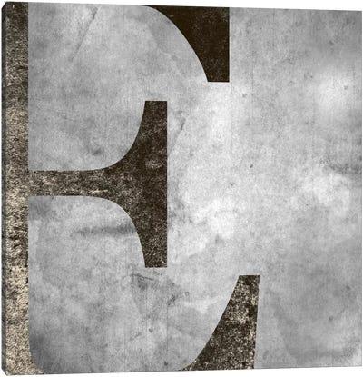E-Silver Fading Canvas Art Print