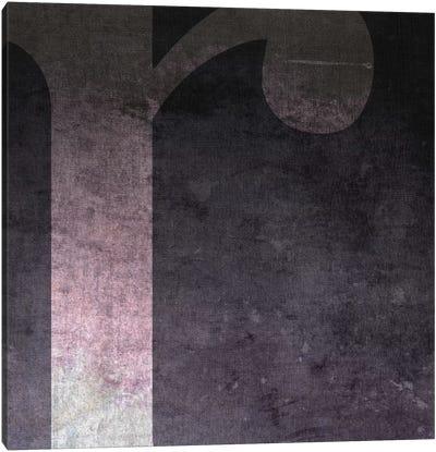 R-B&W Neg Canvas Art Print