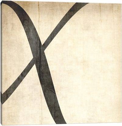 X-Bleached Linen Canvas Art Print