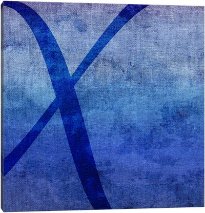 X-Blue To Purple Stain Canvas Art Print