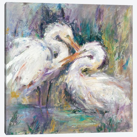 Twin Beaks Canvas Print #TOC14} by Tracy Owen-Cullimore Canvas Wall Art