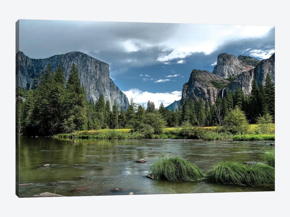 Yosemite by Tim Oldford 1-piece Art Print