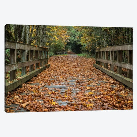 Fall On The Goose (Victoria) Canvas Print #TOL5} by Tim Oldford Art Print