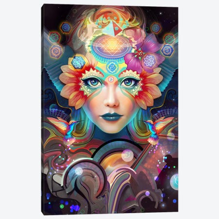 Know Higher Worlds Canvas Print #TOO11} by Alex Tooth Art Print