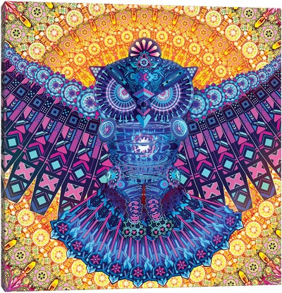 Bright Owl Canvas Art Print