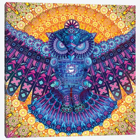 Bright Owl Canvas Print #TOO32} by Alex Tooth Canvas Art Print