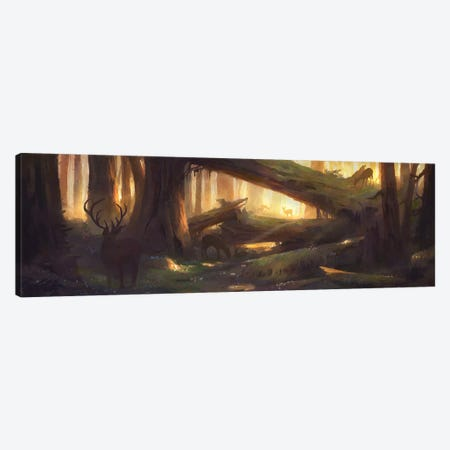 Golden Glade Canvas Print #TOO57} by Alex Tooth Canvas Wall Art