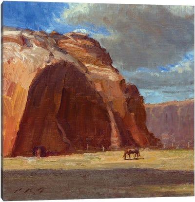 Johnson Canyon Pasture Canvas Art Print