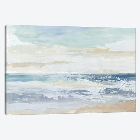 Ocean Salt Canvas Print #TOR330} by Tom Reeves Canvas Art Print