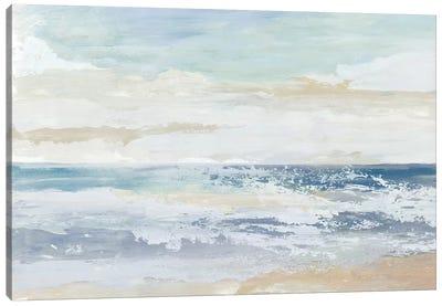 Ocean Salt Canvas Art Print