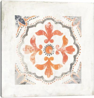 Moroccan Coral III Canvas Art Print