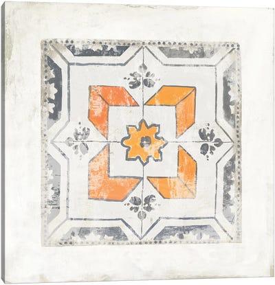 Moroccan Coral IV Canvas Art Print