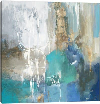 Reflective Distance Canvas Art Print