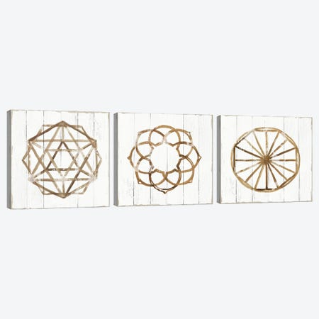 Amulet Triptych Canvas Print Set #TOR3HSET002} by Tom Reeves Canvas Wall Art