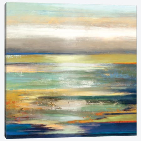 Evening Tide I Canvas Print #TOR45} by Tom Reeves Canvas Art