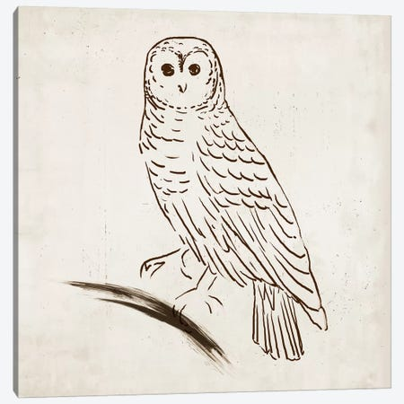 Owl I Canvas Print #TOR96} by Tom Reeves Canvas Print