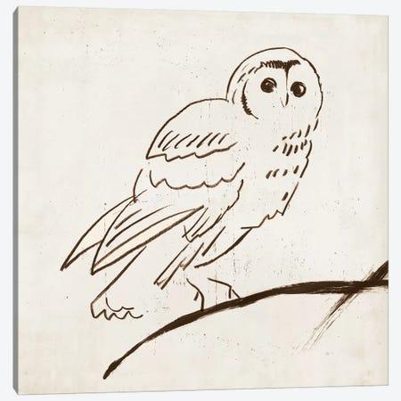 Owl II Canvas Print #TOR97} by Tom Reeves Canvas Art Print
