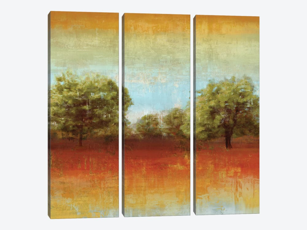All Aglow II by Tom Reeves 3-piece Canvas Wall Art