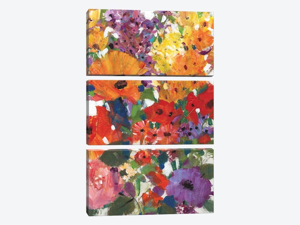 Fresh Floral I by Tim O'Toole 3-piece Canvas Wall Art