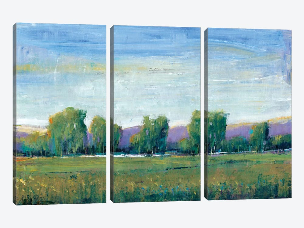 Glen Haven I by Tim O'Toole 3-piece Canvas Wall Art