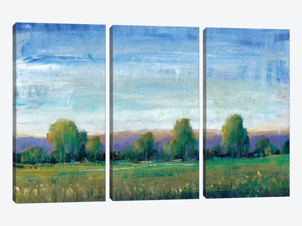 Glen Haven II by Tim OToole 3-piece Canvas Art Print
