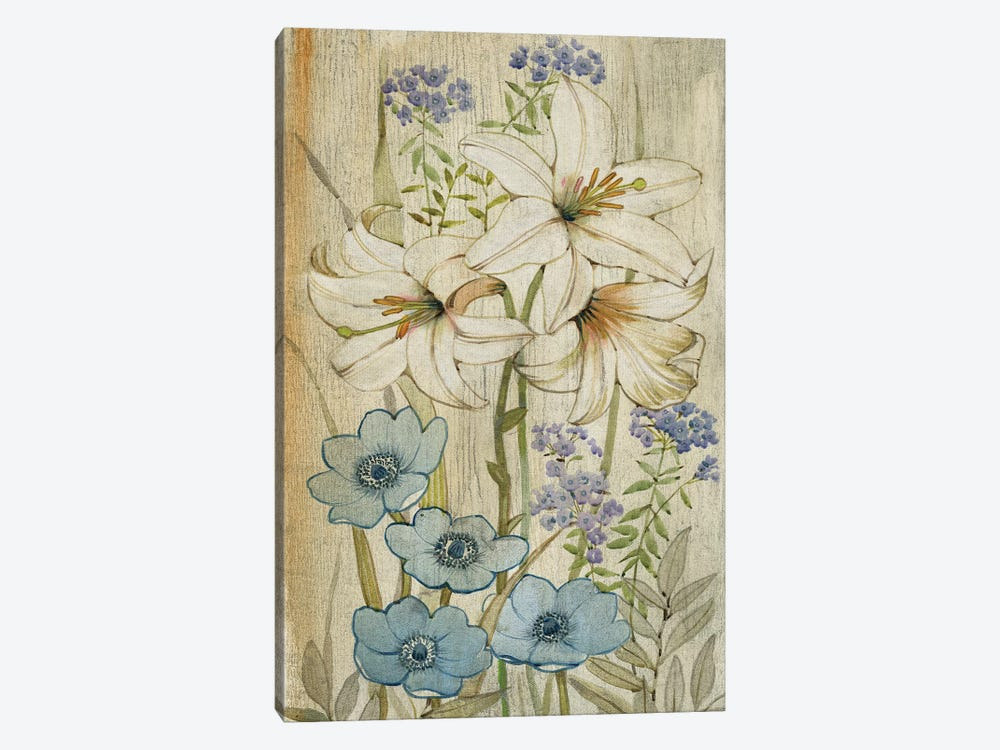 Lily Chinoiserie I by Tim O'Toole 1-piece Canvas Artwork