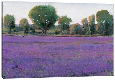 Lavender Field I Canvas Print #TOT10