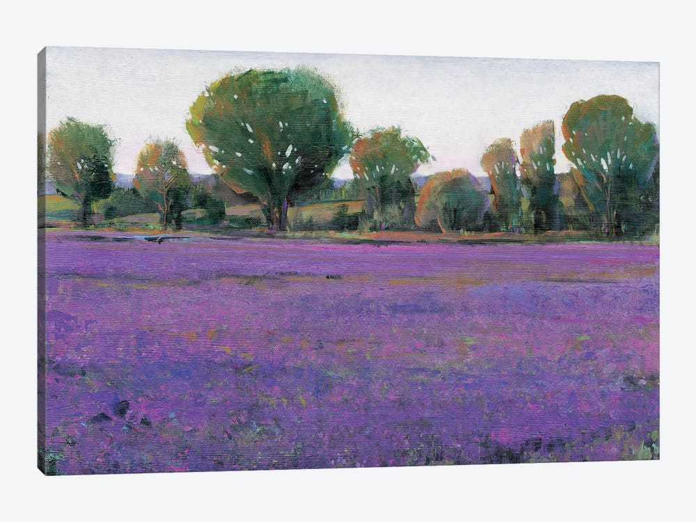 Lavender Field I by Tim O'Toole 1-piece Canvas Artwork