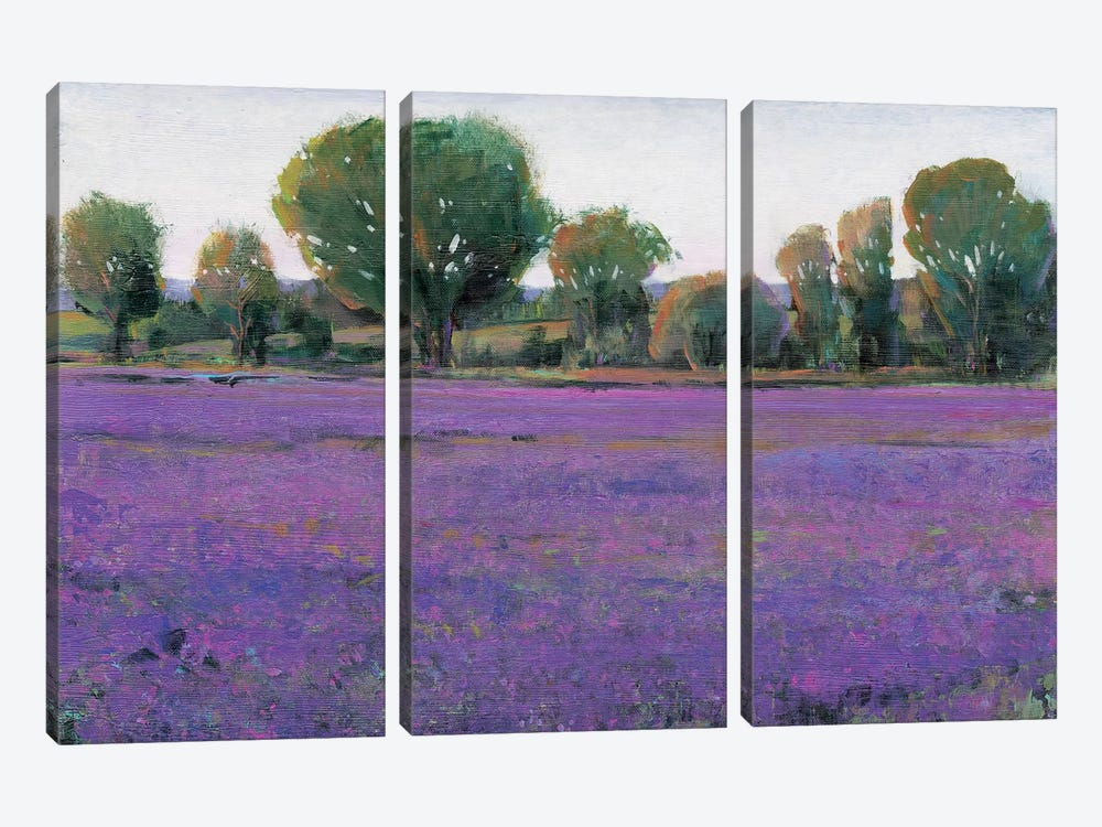 Lavender Field I by Tim O'Toole 3-piece Canvas Artwork