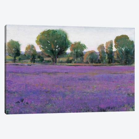Lavender Field I Canvas Print #TOT10} by Tim OToole Canvas Wall Art
