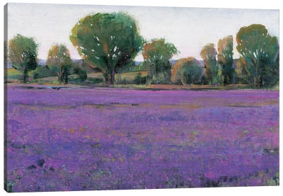 Lavender Field I Canvas Art Print