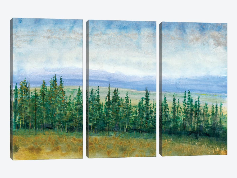 Pine Tops I by Tim OToole 3-piece Canvas Artwork
