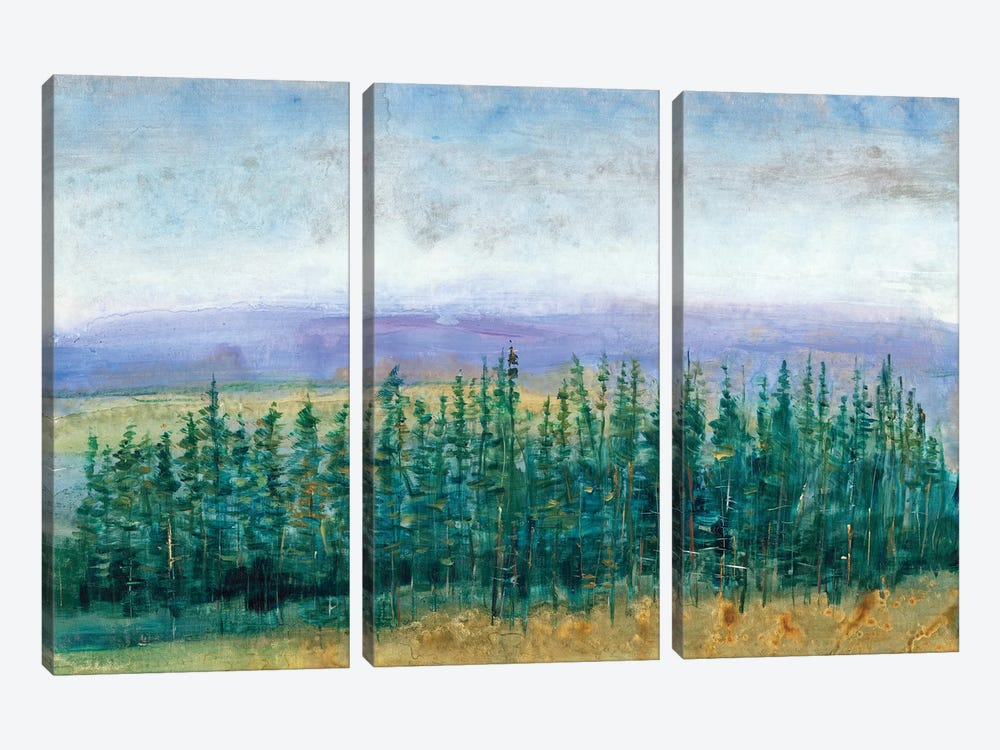 Pine Tops II by Tim O'Toole 3-piece Canvas Art Print