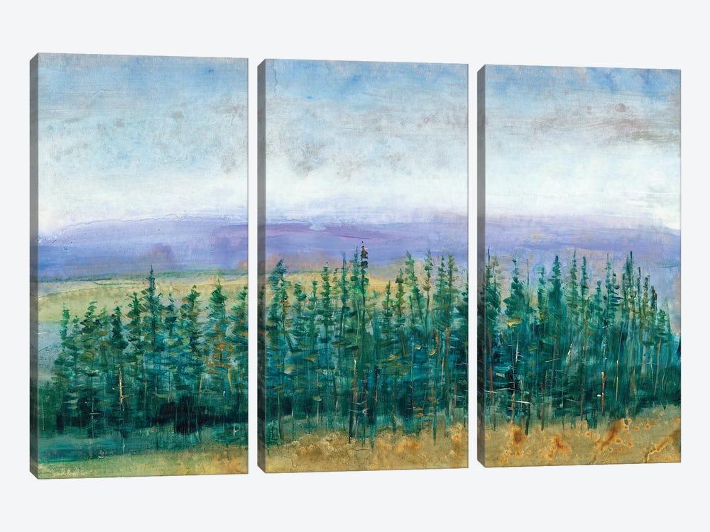 Pine Tops II by Tim OToole 3-piece Canvas Art Print