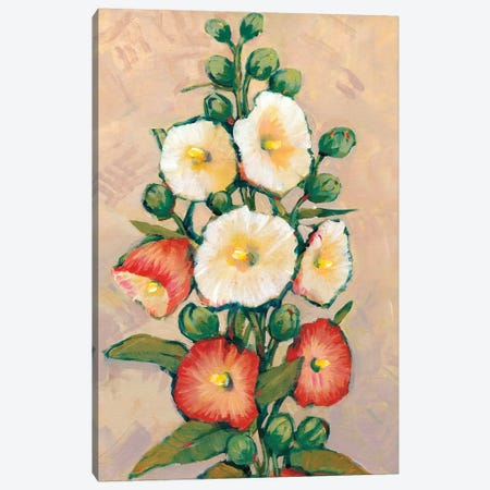 Red Hollyhocks I Canvas Print #TOT117} by Tim OToole Canvas Wall Art