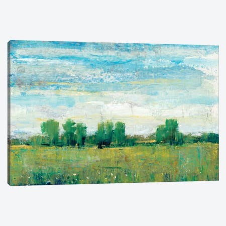 Splendor In Spring I Canvas Print #TOT119} by Tim OToole Art Print