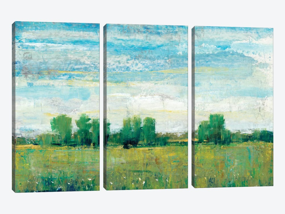 Splendor In Spring I 3-piece Canvas Wall Art