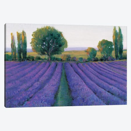 Lavender Field II Canvas Print #TOT11} by Tim OToole Canvas Artwork