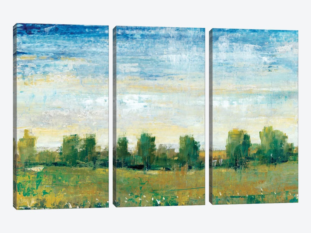 Splendor In Spring II by Tim OToole 3-piece Canvas Wall Art