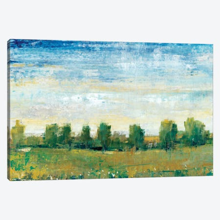 Splendor In Spring II Canvas Print #TOT120} by Tim OToole Canvas Art