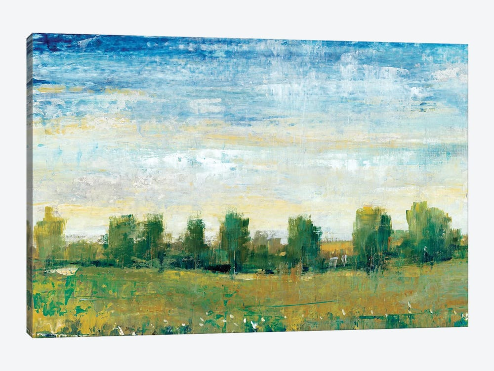 Splendor In Spring II by Tim OToole 1-piece Canvas Wall Art
