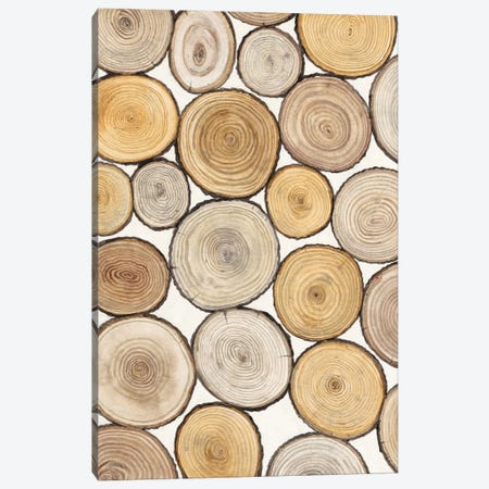 Tree Ring Study I Canvas Print #TOT121} by Tim OToole Canvas Art