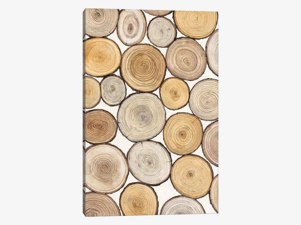 Tree Ring Study I by Tim OToole 1-piece Canvas Print