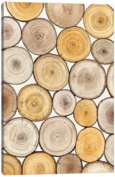 Tree Ring Study II Canvas Art Print