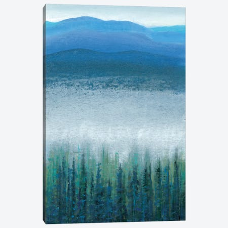 Valley Fog I Canvas Print #TOT123} by Tim OToole Canvas Art