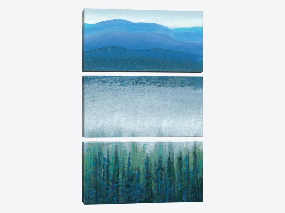 Valley Fog I by Tim OToole 3-piece Canvas Art Print
