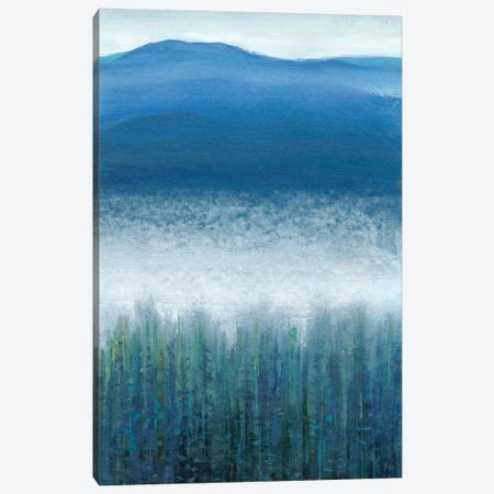 Valley Fog II 3-Piece Canvas #TOT124} by Tim OToole Canvas Art Print