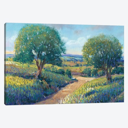 Country Sentrees I Canvas Print #TOT131} by Tim OToole Canvas Print