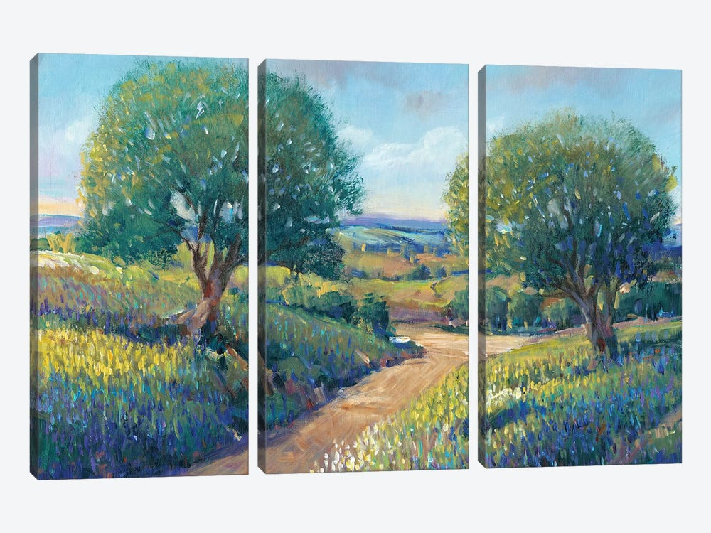 Country Sentrees I by Tim OToole 3-piece Canvas Wall Art
